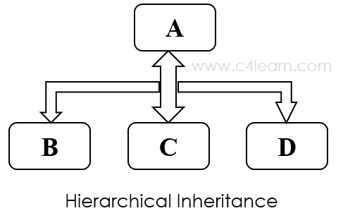 Cplusplus Hierarchical Inheritance